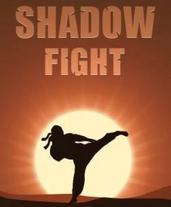 Capa de Shadow Fight
