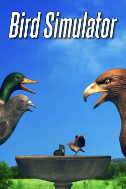 Capa de Bird Simulator